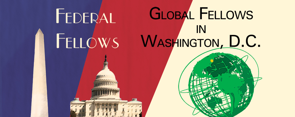 Global Fellows in Washington, DC icon and banner